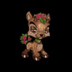 woodland ixi