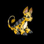 spotted bori