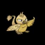 biscuit pteri