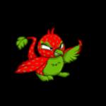 strawberry pteri