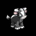skunk kau