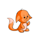 orange kacheek