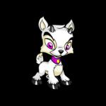 white ixi