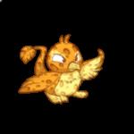 sponge pteri