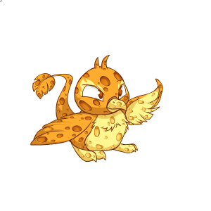 Male Sponge Pteri