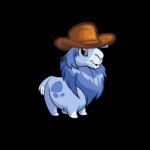 Gnorbu Cowboy Hat