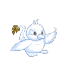 snow pteri