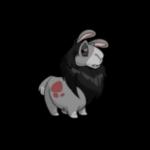 grey gnorbu